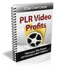 Thumbnail PLR Video Profits Tutorial